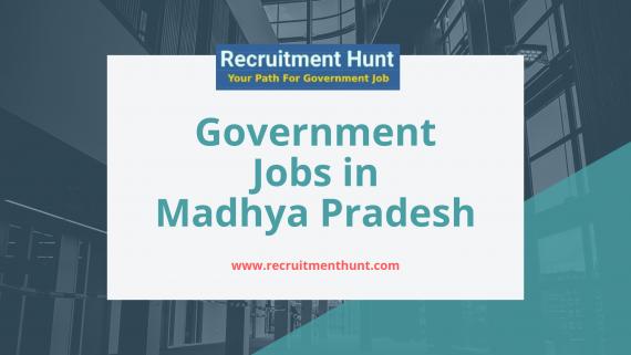 mp govt job 2019